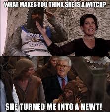 SheTurnedMeIntoANewtGingrich