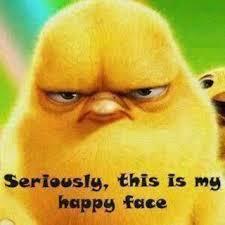 AngryChickbird