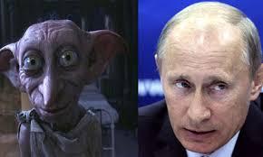 PutinDobby
