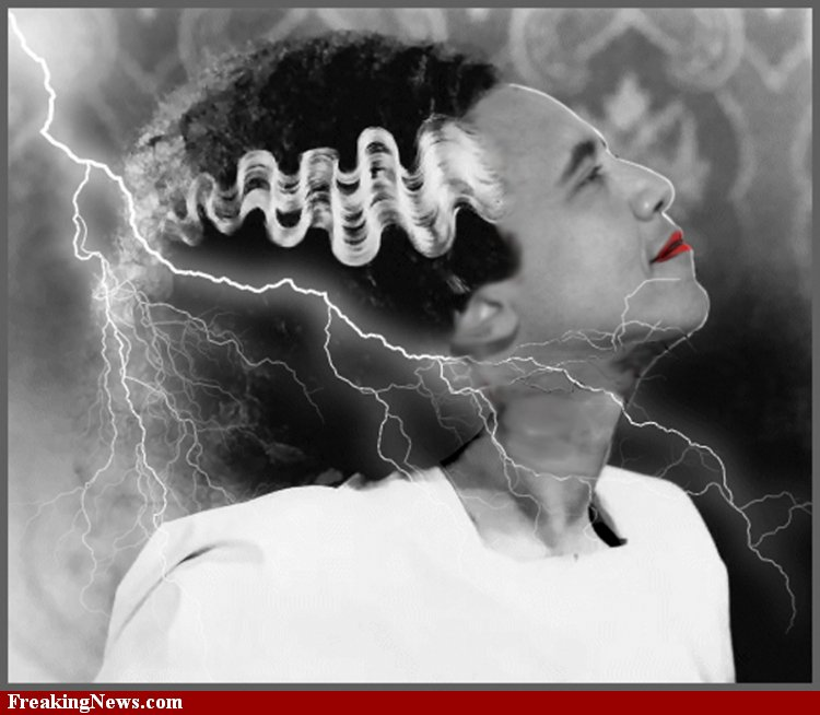 Obama-the-Bride-of-Frankenstein--54436