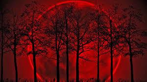 BloodMoonInTrees