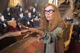 HarryPotterWomanpopbottleGlasses
