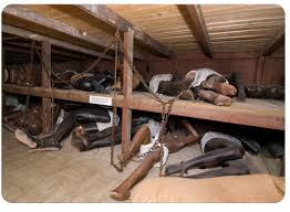 SlaveShip-palletbeds