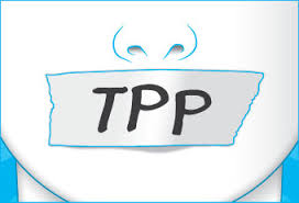 TPPDuctTapedMouth