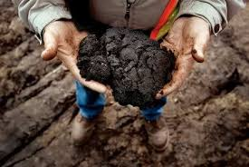 Canadian Athabasca crude is a tar baby for the climate. Burn this stuff and tip the climate's scales to a runaway global warming cascade.