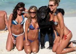 BikiniBabesPoseWMonkey