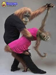 MonkeyFredandGingerDancers