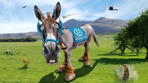 Caricature of Democratic Party Donkey by DonkeyHotey, © Creative Commons.